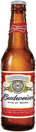 Budweiser 15 PK Bottles