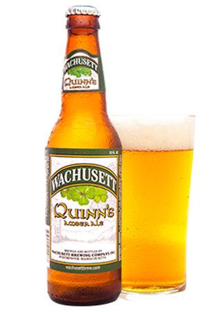 Wachusett Quinn's Amber Ale 12 PK Bottles
