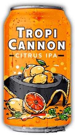 Heavy Seas Loose Citrus IPA 6 PK Cans